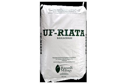 UF-RIATA™ FORAGE SEED