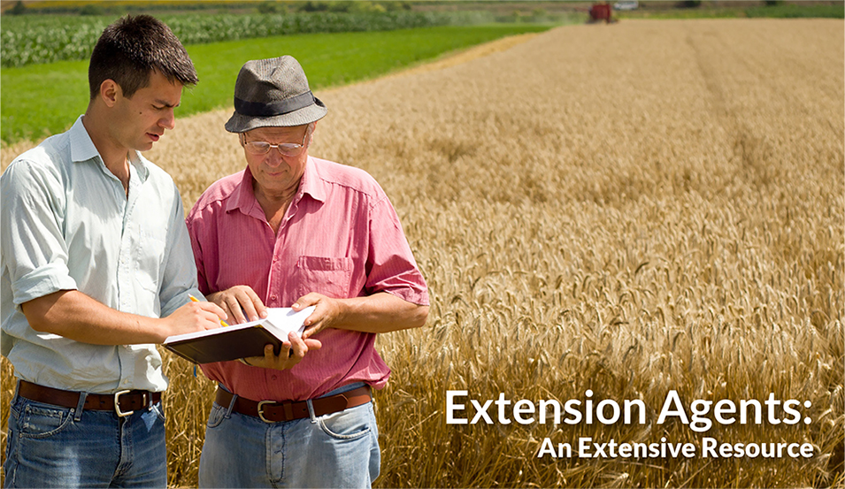 Extension Agent Tips by Ragan & Massey
