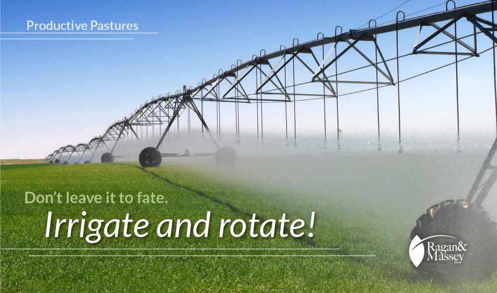 Irrigation and rotation tips by Ragan & Massey