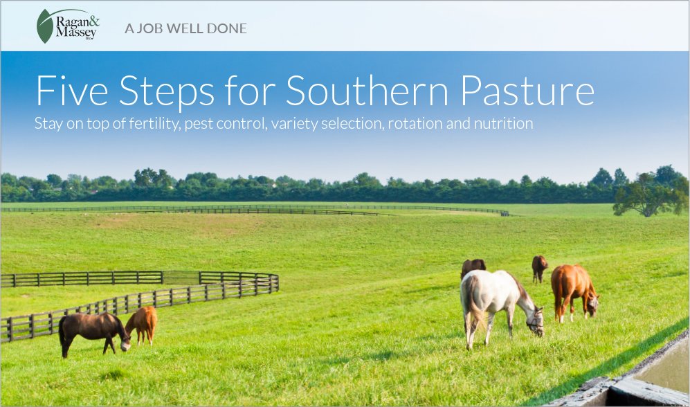 A Job Well Done - Steps for Southern Pasture
