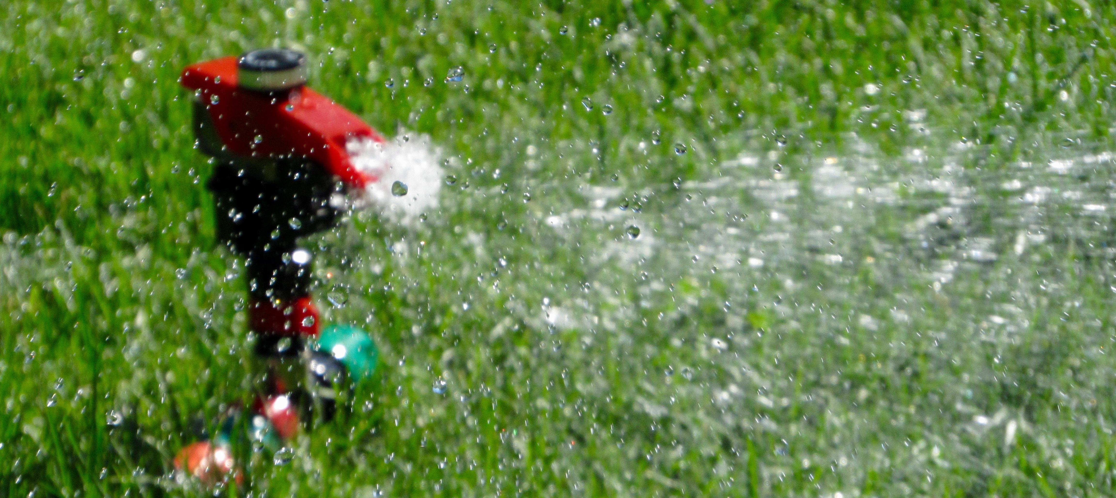 When To Water What Works Best For Lawn And Garden Products